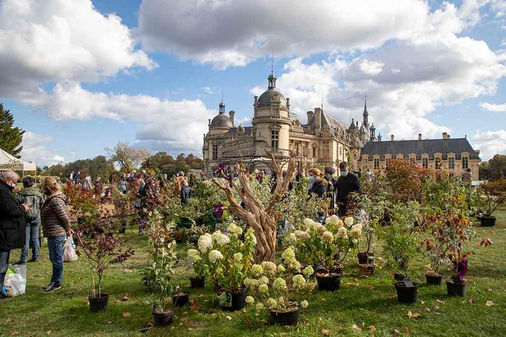 Journee des plantes Chantilly oct 20221