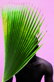 LAKIN OGUNBANWO UNTITLED PALM FROND AFRICA NOW GALERIES LAFAYETTE