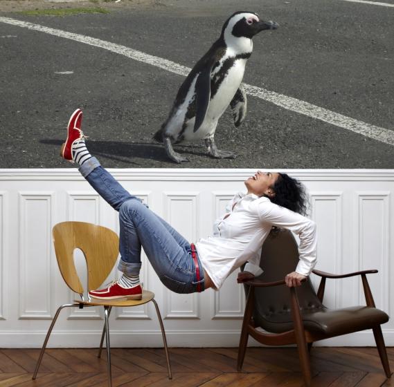 Ladybird_Mode¦Çle_Mitch Jour Férié Paris : Chaussures Dandy pour homme et femme
