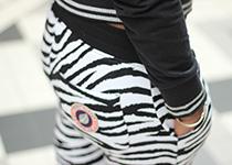 Zebra Freestyle in Sweet Pants