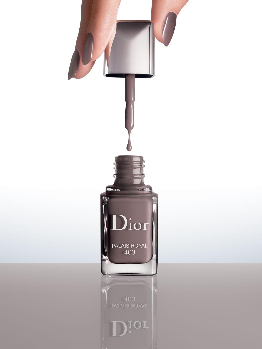 couleur vernis a ongle automne mains Dior palais royal gris