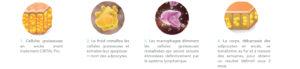 cristal cryolipolyse amincissement medical graisse paris