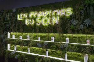 les comptoirs du soin paris bien etre minceur cryolipolyse mur végétal produits