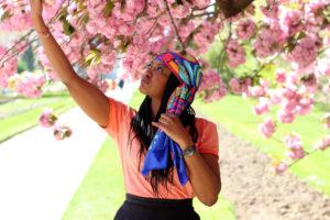 sakura cerisier paris timezone freywille Printemps 11