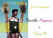 totem box timodelle magazine jeu home